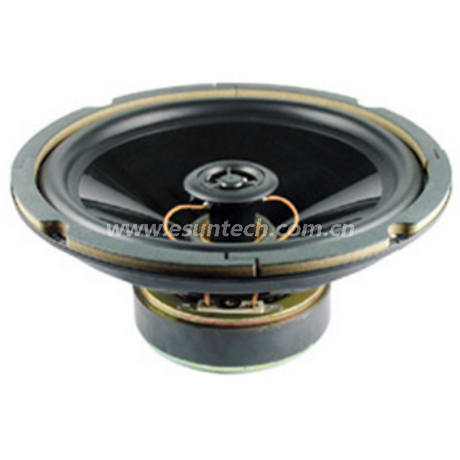 Loudspeaker YD200-06F-8F100RPP2W 8 Inch Car Door Coaxial Speaker, Car Rear Speaker -ESUTECH